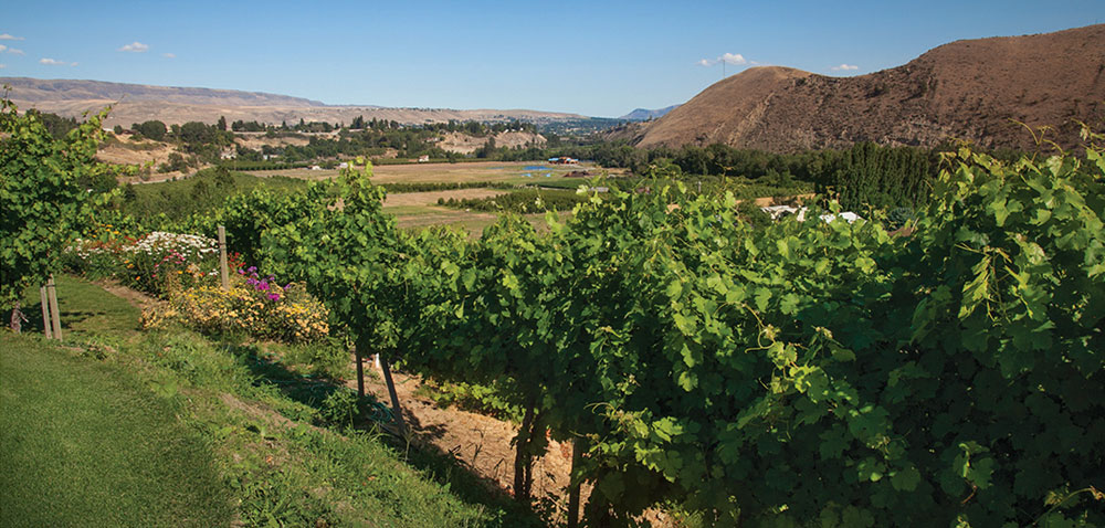 wineregion_wenatchee6